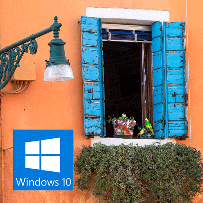 Operativsystem (Windows 10)